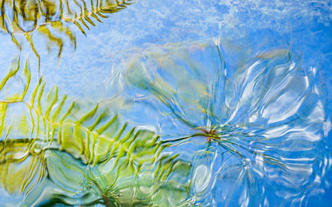 Water (jala)